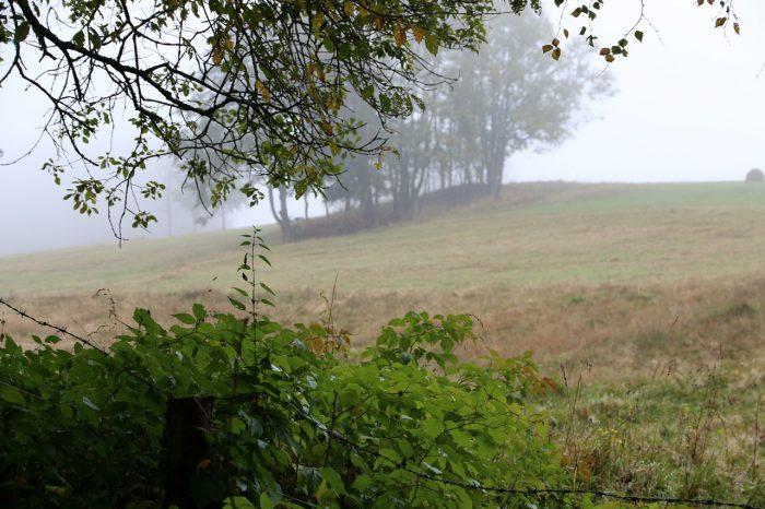 Tu iteraz - wrzesień - jesień da się lubić