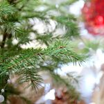 Magiczny choć nieprzychylny – podsumowanie grudnia