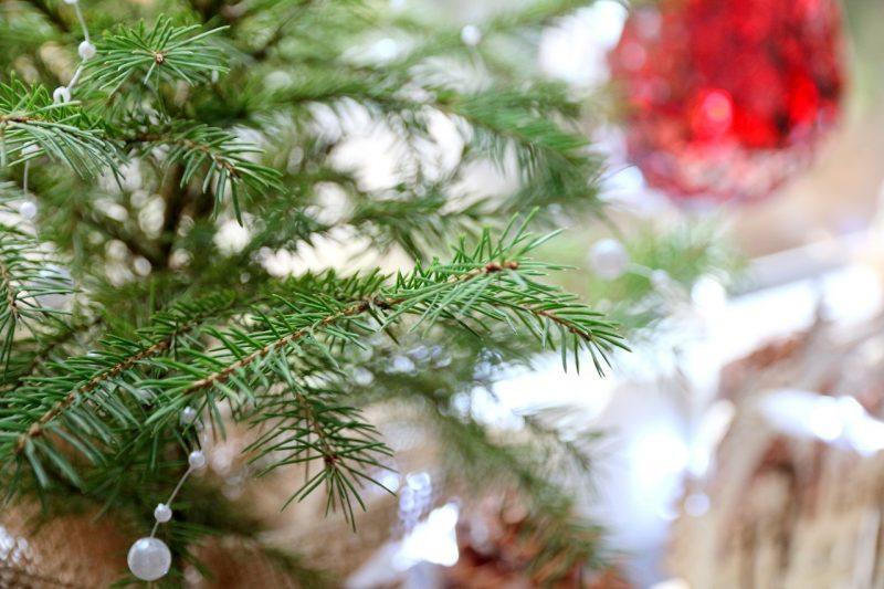 Magiczny choć nieprzychylny - podsumowanie grudnia