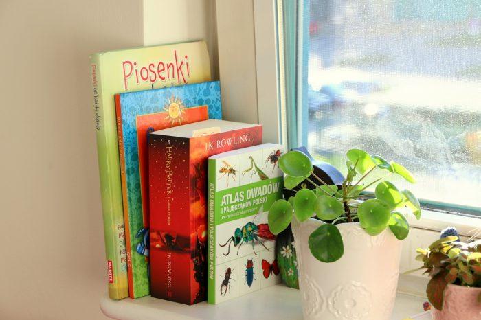 książki naparapecie